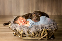 Sadolf Newborn, a boy and his dog, Wilmington NC Newborn Photography