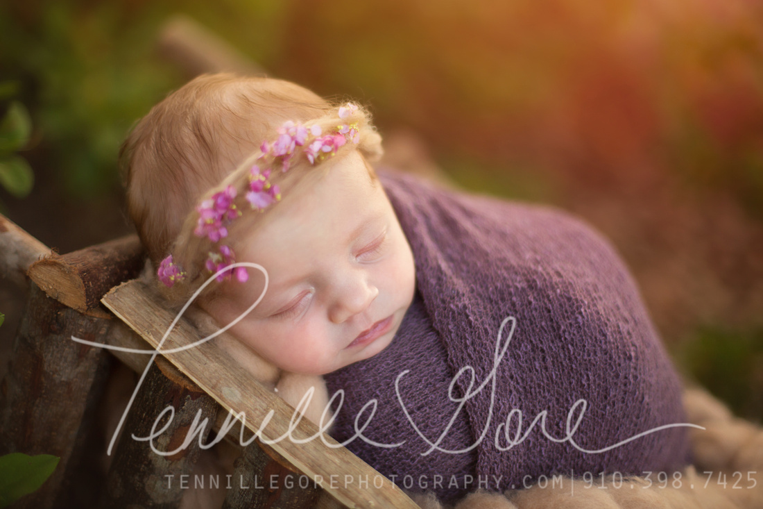 Albertson Location Newborn- Wilmington NC Newborn Photographer