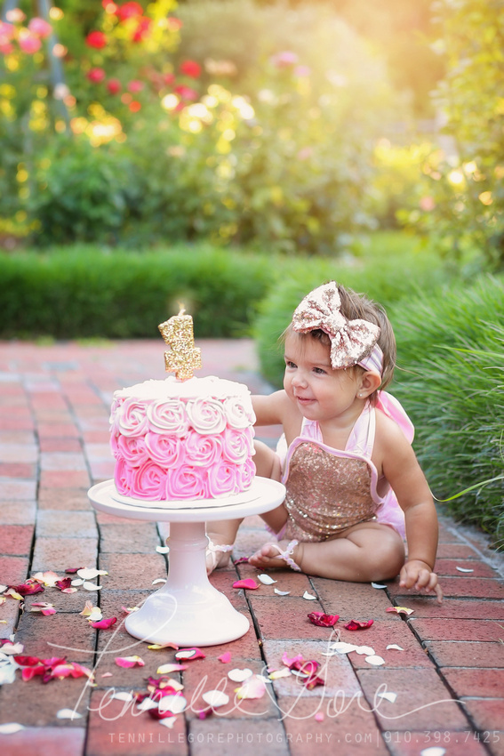 Koch Cake Smash- Wilmington NC Children and Baby Photographer
